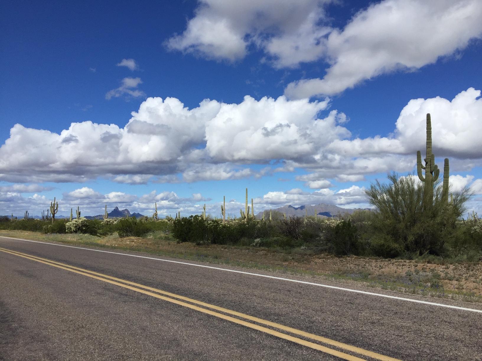 Parklink Road